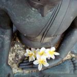 Bloemen voor Buddha